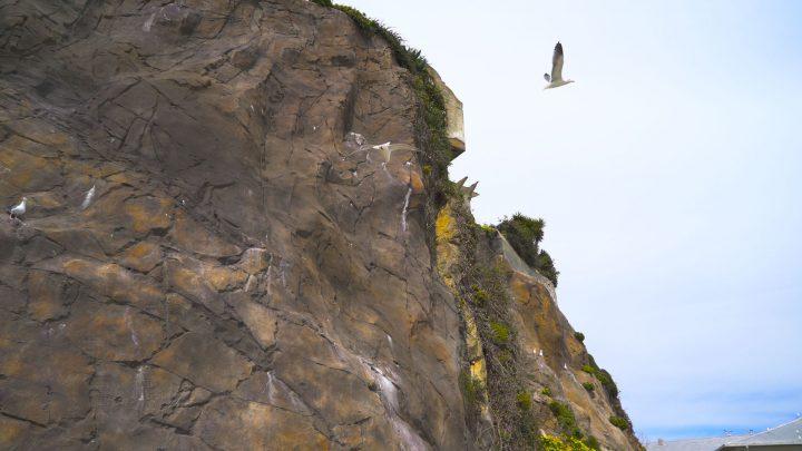 boulderscape-alcatraz-4