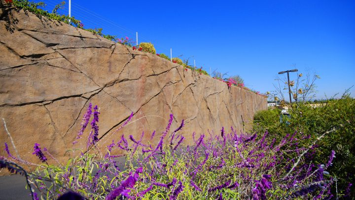 boulderscape-contentbg-hoag-3