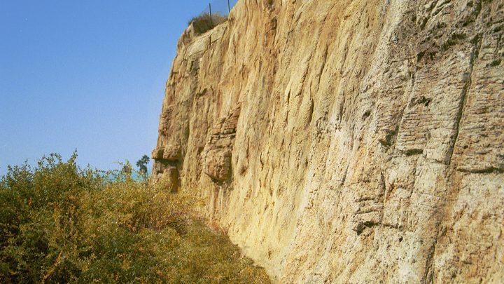 boulderscape-contentbg-pchcamino-2
