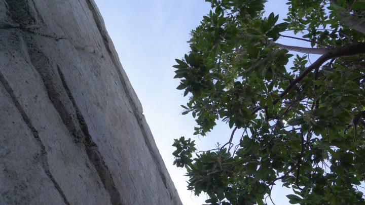 boulderscape-corona-walmart-cu-10
