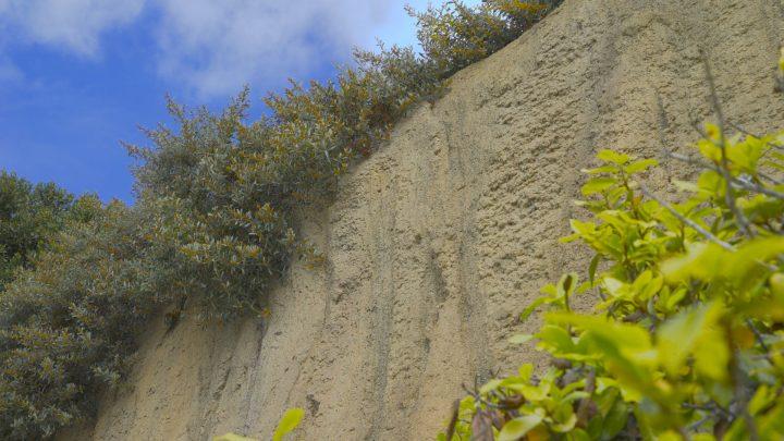 boulderscape-lajolla-19
