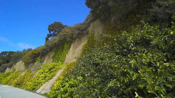 boulderscape-lajolla-2