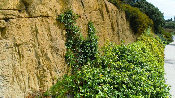 boulderscape-lajolla-32