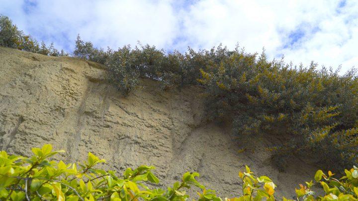 boulderscape-lajolla-33