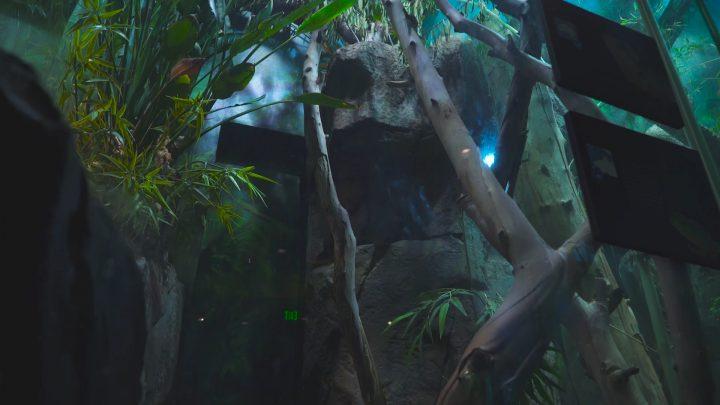 boulderscape-lazoo-15