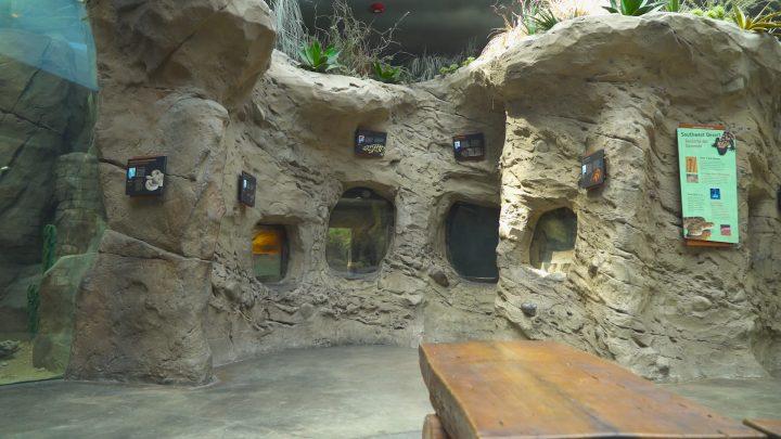 boulderscape-lazoo-23