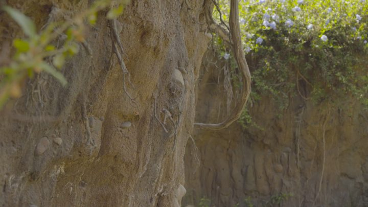 boulderscape-lazoo-25