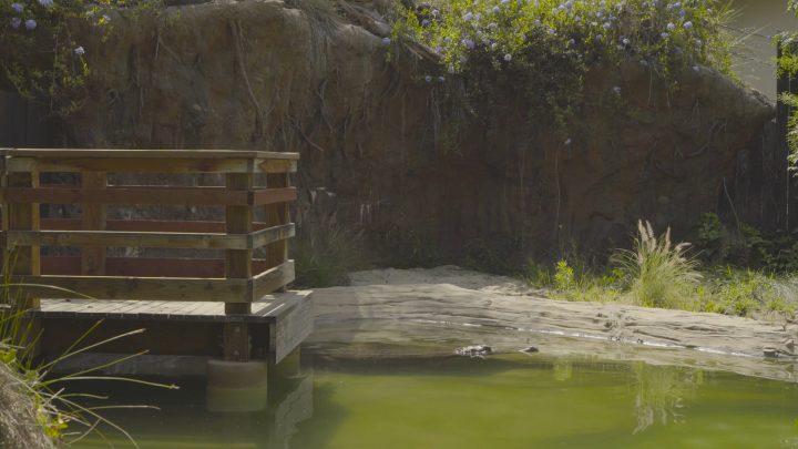boulderscape-lazoo-26