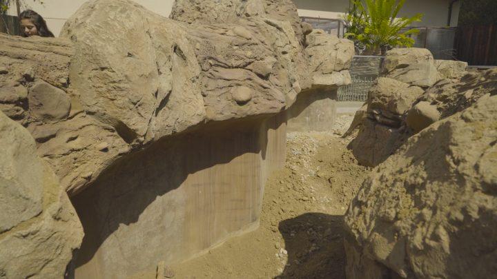 boulderscape-lazoo-30