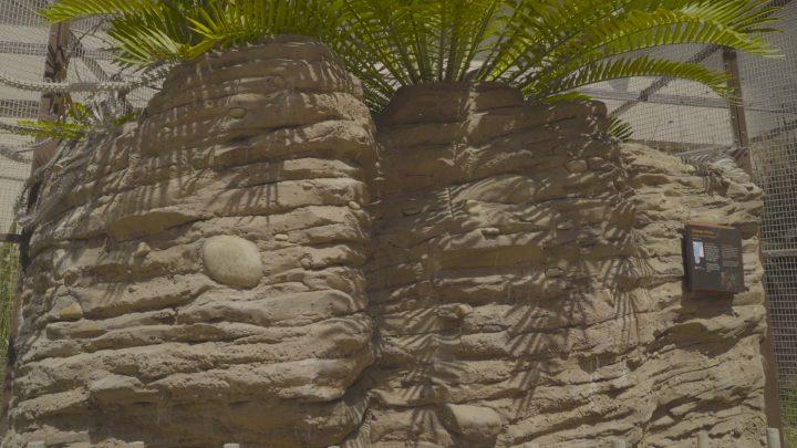 boulderscape-lazoo-32