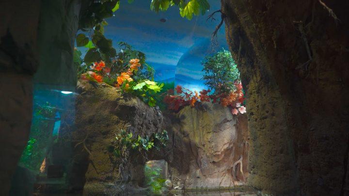 boulderscape-lazoo-7